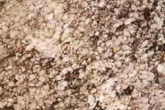 Textura de pedra da calcite - fundo imagens de stock