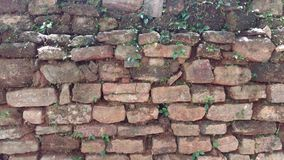 Textura de pedra da parede de tijolos Imagens de Stock