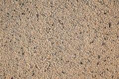 Textura de pedra do cascalho Imagens de Stock Royalty Free
