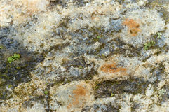 Textura de pedra do fundo, superfície da pedra Imagens de Stock