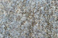 Textura de pedra do fundo, superfície da pedra Imagem de Stock