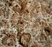 Textura de pedra dura foto de stock
