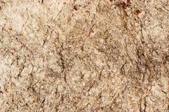 Textura de pedra de Feldspato - fundo fotografia de stock