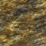 Textura de pedra molhada Fotografia de Stock