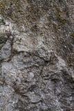Textura de pedra natural Fotografia de Stock