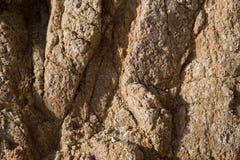 Textura de pedra vermelha rachada e porosa Fotografia de Stock Royalty Free