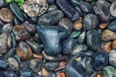 Textura de pedras molhadas no banco de rio Os seixos coração-dados forma e coloridos do seixo e molharam imagem de stock