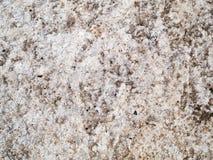 Textura de piedra abigarrada Fotos de archivo libres de regalías