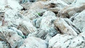 Textura de piedra al aire libre almacen de video