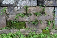 Textura de piedra apilada Fotografía de archivo