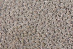 Textura de piedra del camino Imagen de archivo