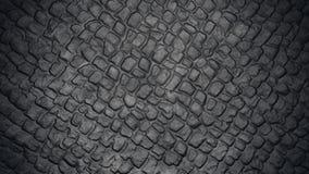 Textura de piedra del camino Foto de archivo libre de regalías