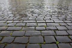 Textura de piedra mojada del pavimento fotografía de archivo libre de regalías