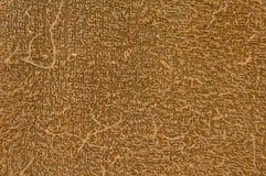 Textura de seda Imagens de Stock Royalty Free