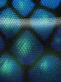 Textura de Snakeskin Fotos de Stock Royalty Free