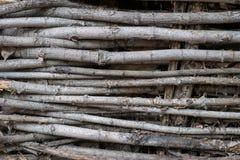 A textura de superfície da madeira Foto de Stock Royalty Free