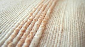 Textura de tecelagem Fotografia de Stock