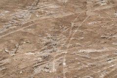 Textura de tierra Стоковое Фото