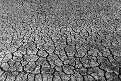 Textura de tierra agrietada Foto de archivo libre de regalías
