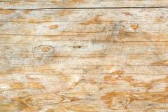 Textura de uma árvore natural com uma estrutura incomum foto de stock