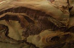 Textura de uma grande pedra do pedregulho com divórcios e testes padrões naturais bonitos ilustração do vetor