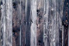 Textura de uma parede de madeira Fotografia de Stock