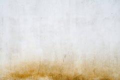 Textura de uma parede do molde Fotos de Stock