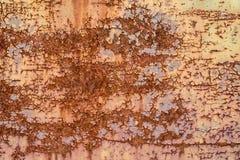 Textura de uma porta oxidada Imagem de Stock
