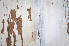 Textura de uma superfície de madeira com pintura rachada branca fotos de stock royalty free
