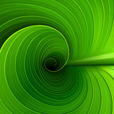 Textura de una hoja verde Fotos de archivo libres de regalías
