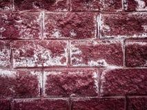 Textura de una pared de ladrillo roja Fotografía de archivo libre de regalías