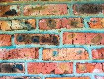 Textura de una pared de ladrillo roja Foto de archivo libre de regalías