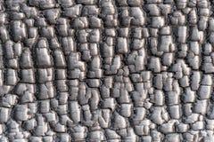 Textura de una pared de madera quemada, primer Imagen de archivo libre de regalías