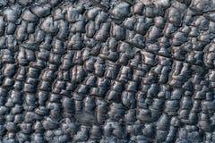 Textura de una pared de madera quemada, primer Foto de archivo