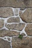 Textura de una pared de piedra Imágenes de archivo libres de regalías