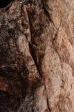 Textura de una piedra Fotos de archivo