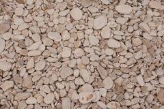Textura decorativa del suelo Imagen de archivo