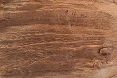 Textura del árbol para crear un fondo natural foto de archivo
