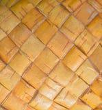 Textura del abedul del árbol de corteza, primer Imagenes de archivo