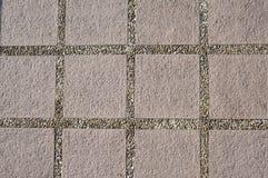 Textura del callejón del parque Imagen de archivo