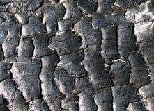 Textura del carbón de leña Fotografía de archivo libre de regalías