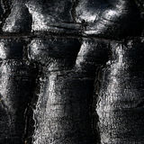 Textura del carbón de leña Fotografía de archivo