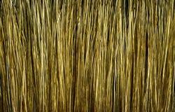 Textura del cepillo Foto de archivo