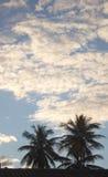 Textura del cielo Imagen de archivo