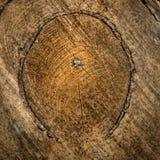 Textura del cierre de madera marrón para arriba imagenes de archivo