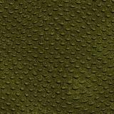 Textura del cocodrilo de la piel del reptil Imagenes de archivo