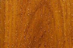 Textura del conglomerado de madera laminado debajo de un árbol imagen de archivo