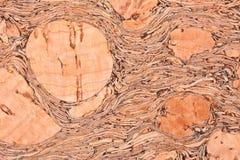 Textura del corcho Fotografía de archivo