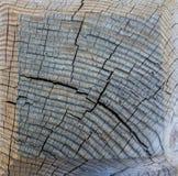 Textura del corte de madera Fotografía de archivo