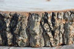 Textura del corte de madera del tamarindo para la tabla de cortar hecha Foto de archivo libre de regalías